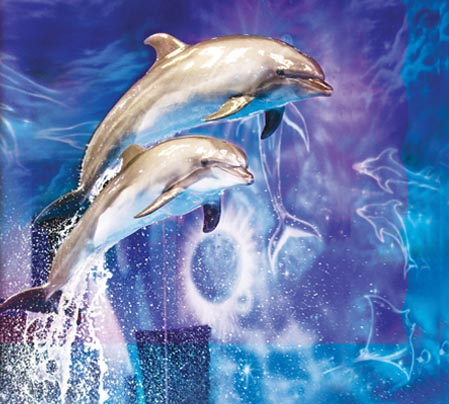 UAE's Dolphin & Seal Show