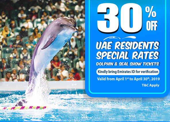 dolphin show women's month offers