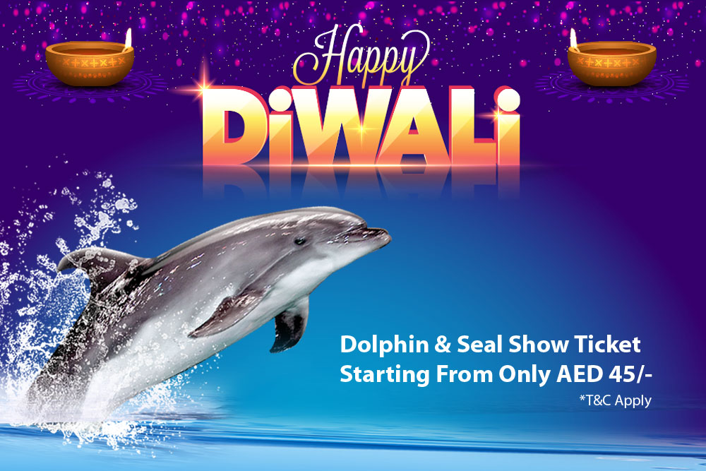 DIWALI DISCOUNTED SHOWS